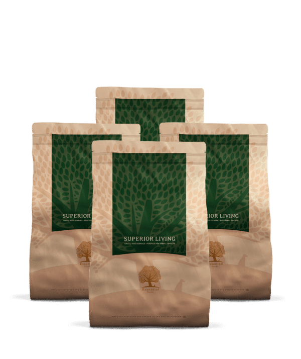 4 x 3KG ESSENTIAL SUPERIOR LIVING SMALL SIZE
